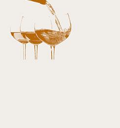 vins à moins de 15€
