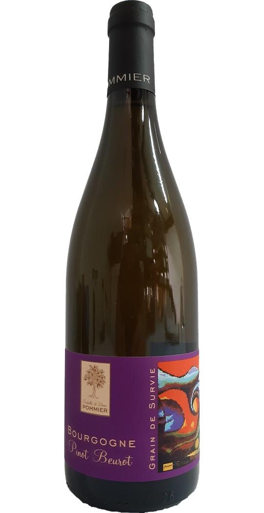 Bourgogne grain de survie Pinot Beurot
