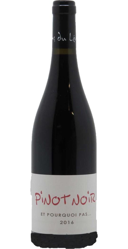 IGP vin des Allobroges Et pourquoi pas ?